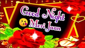 Read more about the article तुम मेरे दिल में रहते हो   good night wishes shayari   shayari for everyone  