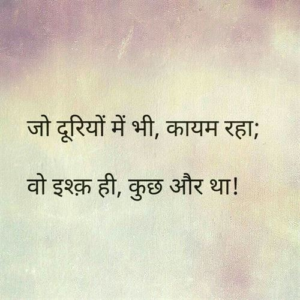 Read more about the article 224 Best Love Shayari Status Images in Hindi