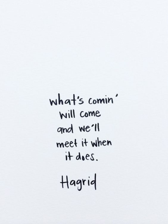 You are currently viewing 5+ Best Harry Potter Quotes Collections For Inspiration