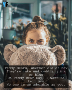 Read more about the article Happy Teddy Day Quotes, Wishes and Saying   YourFates