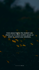 Read more about the article Inner peace begins the moment you choose not to allow another person to control your emotions.