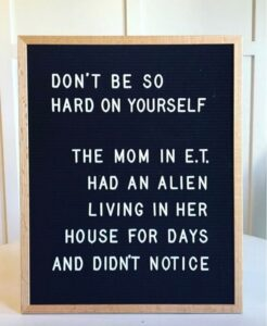 Read more about the article Letterboards-Are you funny enough to own one? – Nesting With Grace