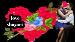 Read more about the article Love Shayari 💕लव शायरी❤ Love Shayari in Hindi for Love😘 Love Shayari status💖 Love Shayari Image