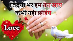 Read more about the article New Love Shayari 2021🌹  New Romantic Shayari 🌹  Love Shayari 🌹  Wishes To Everyone