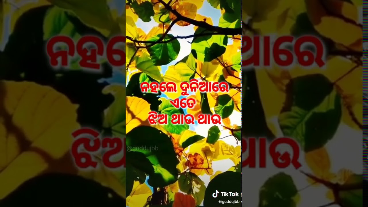 You are currently viewing Odia new status vedio. Odia shayari. Guddujbb. Odia new song