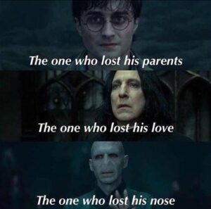 Read more about the article 21 Harry-Potter-Memes, die niemals nicht witzig sind