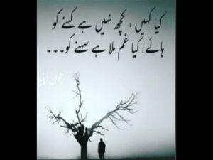Read more about the article Best Poetry For Sadness In Urdu 2021   Sad Shayari   Poetry lover's