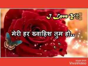 Read more about the article I Love You Shayari Status Video   I Love You Shayari   Romantic Shayari Status….