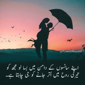 Read more about the article Love and Romantic Shayari in Urdu