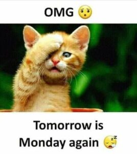 Read more about the article OMG !! Tomorrow is monday again ..