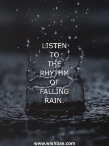 Read more about the article Rain Quotes and Sayings – Romantic, Beautiful, Funny Quotes about Rain