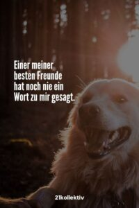 Read more about the article Spruch des Tages (5)
