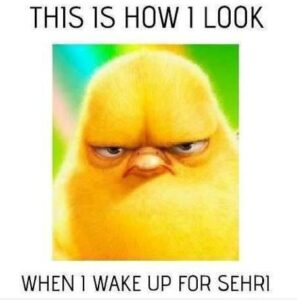 Read more about the article When I Wake Up for Sehri
