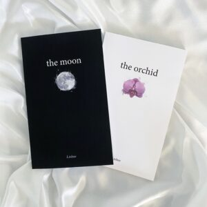 Read more about the article poetry books by k.tolnoe