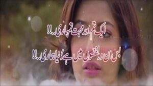 Read more about the article Best Shayari In Urdu For Love   Best Shayari Status   Poetry lover's