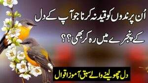 Read more about the article Best Urdu Quotations | Love Quotes In Hindi | Golden Words In Urdu | Bitter True Life Quotes |