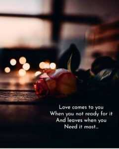 Read more about the article Deep Love Quotes