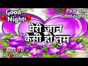 Read more about the article Good night shayari video 2020 | गुड नाईट शायरी वीडियो