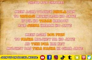 Read more about the article MEIN AGAR