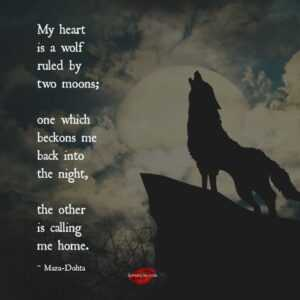 Read more about the article My heart is a wolf ruled by two moons – I Love My LSI