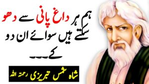 Read more about the article SHAH SHAMS TABRIZI Quotes in Urdu   Insaan Ki Zaat Ke Daag   TABREZI Thoughts