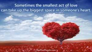 Read more about the article Sometimes the smallest act of love can take up the biggest space in someone's he