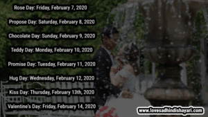Read more about the article Valentine Week List 2020, Rose Day, Hug Day, Kiss Day..