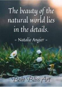Read more about the article Women & Nature: Quotes About the Great Outdoors ~ Boom2Bloom.com