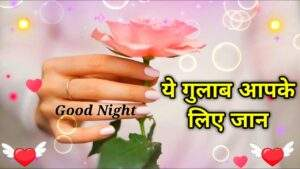 Read more about the article 🌹Ye Gulab Apke Liye jaan | Good Night shayari video | Wishes for everyone