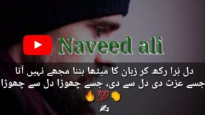Read more about the article Heart Touching Collection of Two Line Poetry Urdu sad Shyari 2 Line shayri  Naveed ail