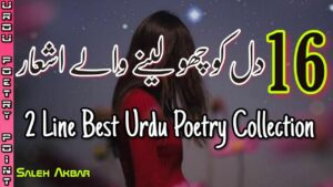 Read more about the article 2 Line Best Urdu Poetry Collection | Two Line Sad Shayari | Sad Poetry 2 Line | Saleh Akbar