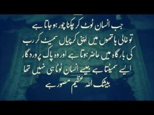 Read more about the article Best Heart Touching Quotes in Urdu | Mr Poet
