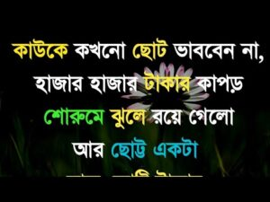 Read more about the article Best motivational quotes in Bangla || Monishider bani|| Heart touching quotes|| Ukti||Khela hobe