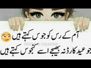Read more about the article Eid Shayari Funny / Eid poetry / Funny Eid poetry /Best Eid poetry /Rehan shayari /Funny poetry /