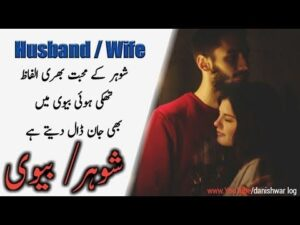 Read more about the article Husband and wife Quotes in urdu hindi   شوہر بیوی   danishwar log