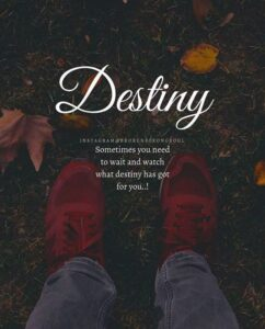 Read more about the article Inspirational Positive Quotes :Destiny.