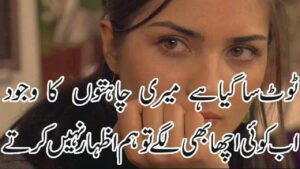 Read more about the article Most Heart Touching Poetry 2 line sad heart broken Poetry Adeel Hassan Two line urdu sad shayri 