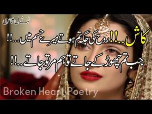 Read more about the article Top 30 Best 2 Line Poetry   Most Heart Touching Poetry   Sad Urdu Poetry   Hindi Shayari   Fk Poetry