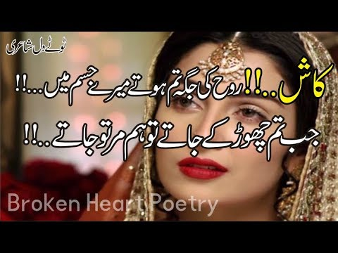 You are currently viewing Top 30 Best 2 Line Poetry   Most Heart Touching Poetry   Sad Urdu Poetry   Hindi Shayari   Fk Poetry