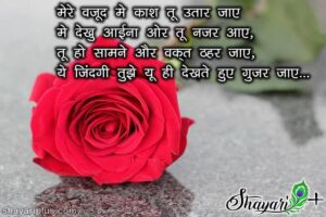 Read more about the article love shayari for gf girlfriend in hindi and english with images