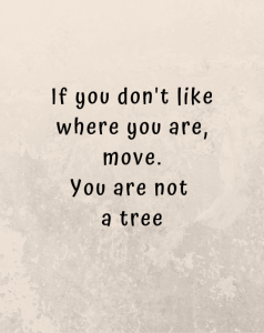 Read more about the article need motivation quotes – Splendid Traveler