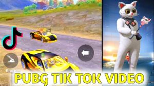 Read more about the article PUBG Tik Tok VIDEO || PUBG attitude tiktok || Pubg attitude status || Part 300 || Shi GamingYT
