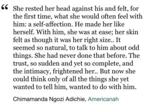 Read more about the article Americanah by Chimamanda Ngozi Adichie Book Review – Sophia Ismaa