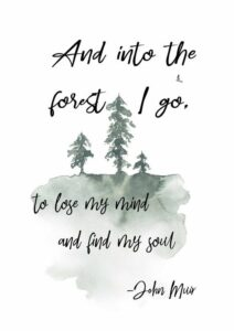 Read more about the article And into the forest I go, to lose my mind and find my soul. John Muir printable art quote, available for instant download