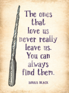 Read more about the article Famous Harry Potter Quotes about Friendship, Family and Love
