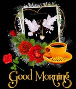 Read more about the article #Good Morning🌄 #শুপ্ৰভাত🌄olgeboer Albo Good MorningGood Morning🌄 By 🇦🇺Sha…📍 on ShareChat – WAStickerApp, Status, Videos and Friends