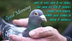 Read more about the article Good Morning Shayari