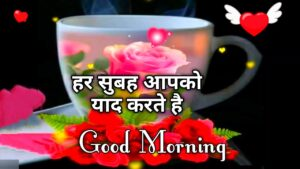 Read more about the article 🌹Good Morning Video😊 New whatsapp status facebook msg greetings Romantic shayari quotes wallpaper