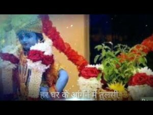 Read more about the article Happy Tulsi Vivah quotes| Dev Uthani Ekadashi Status | Whatsapp quotes