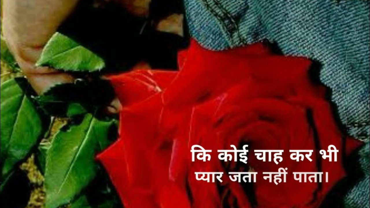 You are currently viewing Izhare Ishq Emotional Shayari Propose Day SMS Quotes